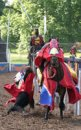 knights jousting show